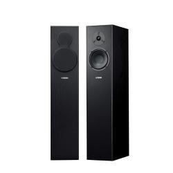 Enceinte colonne 2 voies bass reflex Noir: Audio & HiFi