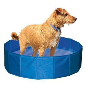 Piscine pour chien Achat / Vente Piscine pour chien pas cher