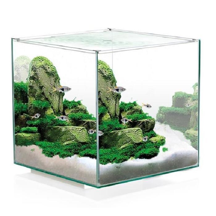 Aquarium design tout équipé 14 litres Achat / Vente aquarium