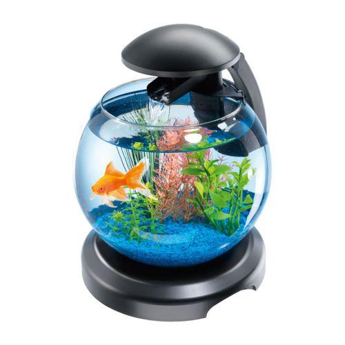 Tetra Cascade Globe Aquarium design équipé de 6,8 L pour poissons