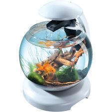 Aquarium boule en verre avec Filtre Tetra cascade Globe Noir