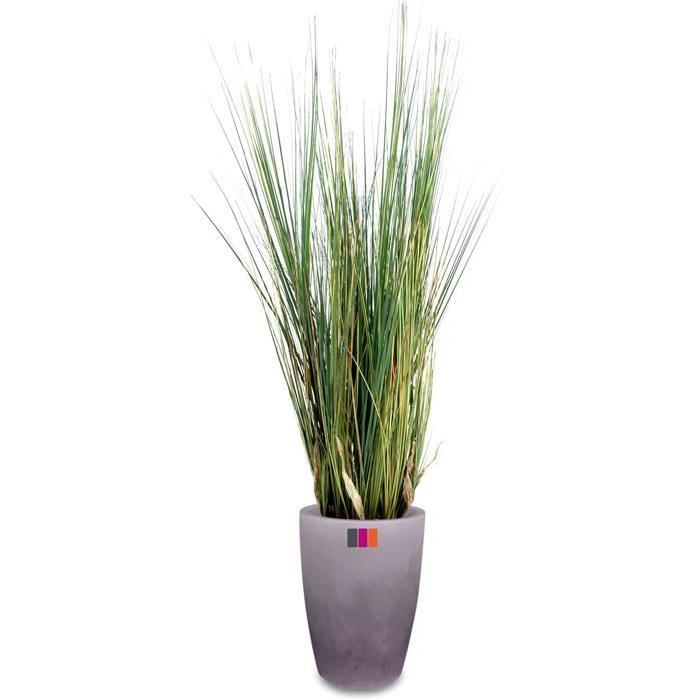 Plante d exterieur topiwall for Plantes d exterieur