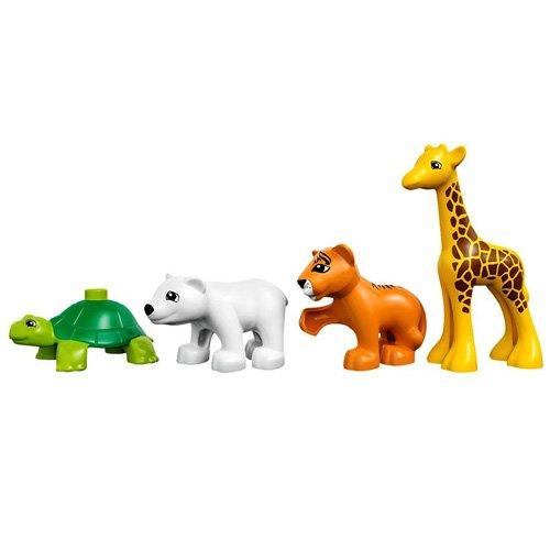 Lego Duplo Ville 10801 Les Bébés Animaux Du Monde LEGO