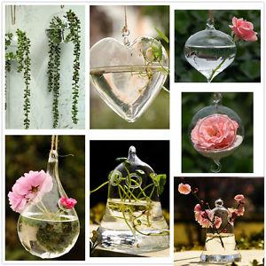 Verre Vase Plante Fleur Terrarium Récipient Mariage Jardin Déco