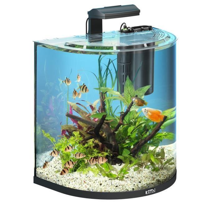 TETRA AquaArt Explorer 60l Achat / Vente aquarium Aquarium 60l