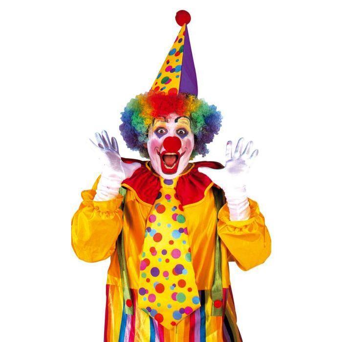 Set De Clown, Chapeau Carnaval Achat / Vente chapeau perruque