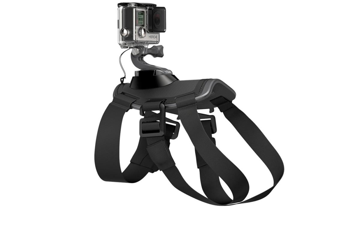 Accessoires pour caméra sport Gopro HARNAIS POUR CHIEN FETCH (4129490
