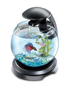 Tetra Aquarium Cascade Globe Noir: Animalerie