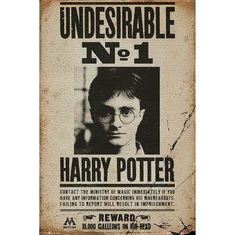 Poster Harry Potter Undesirable No. 1 91.5 x 61cm, Top Prix | fnac