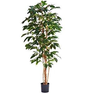 Plante artificielle Coffea arabica, café, altitude 120cm 329