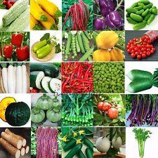 Organique Graines de Légumes Fruits Semences Plante Jardin Balcon