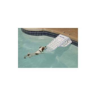 Procopi Rampe d'accès sauve chien pour piscine pas cher Achat
