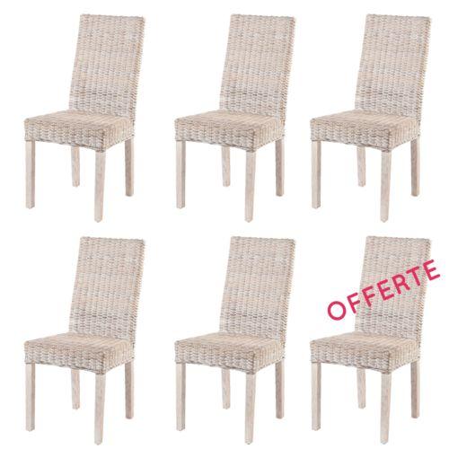 Rotin Design Lot 6 Chaises en Rotin Blanc Zicavo Chaises de salle