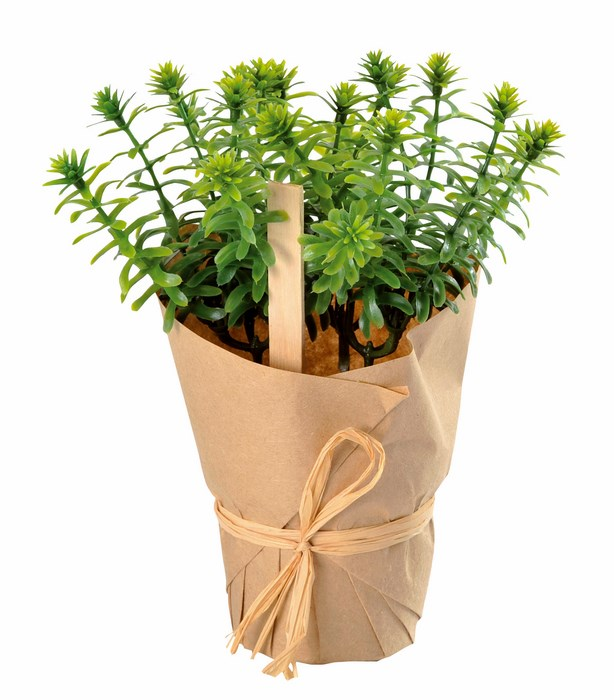 SANTEX 3515 2, Plante artificielle, Plante aromatique en pot, Romarin