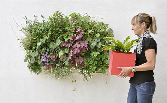 Pack 4 Kits Mur Végétal Extérieur Brique Verte 36x39cm