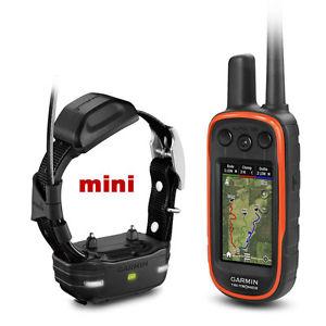 Garmin Alpha 100 TT15 mini petit chiens Collier GPS Suivi