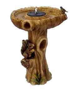 Fontaine de Jardin Bain d 039 oiseaux solaire cureuil Exterieur D