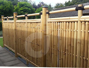 Bambou Brise VUE Jardin Clôture Brise Vent Sumatra Nature 90×180 CM