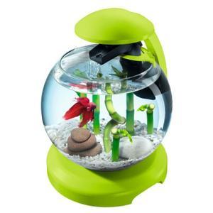 Aquarium Tetra Achat / Vente Aquarium Tetra pas cher