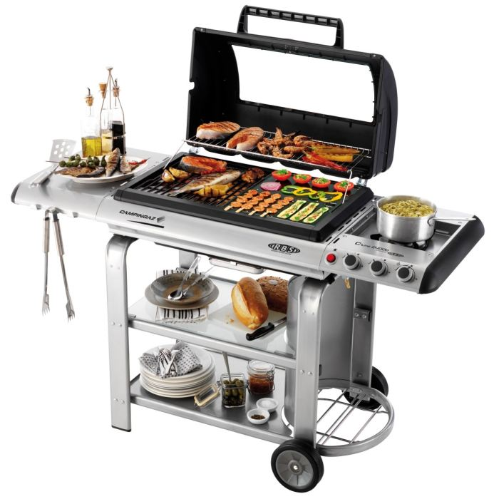 LINE 2400 D Barbecue A Gaz Powered By Rbs Achat / Vente barbecue