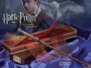 Baguette Magique Harry Potter Harry Potter: Jeux et