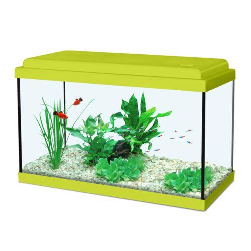 Zolux Aqua Nanolife Kidz 35 Vert pas cher Achat / Vente Aquarium