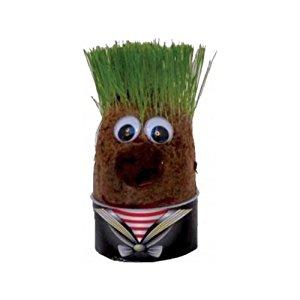 Mr Bart's Original tête à faire pousser en herbe: Cuisine