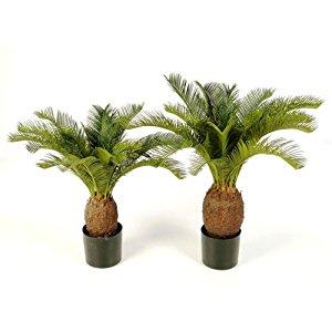 et décoration décoration de la maison végétaux artificiels plantes