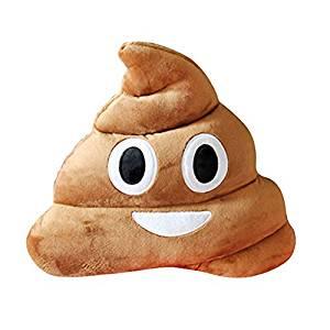Chinatera Emoji Nouvelle Aimable Coussin en forme de Caca Crotte
