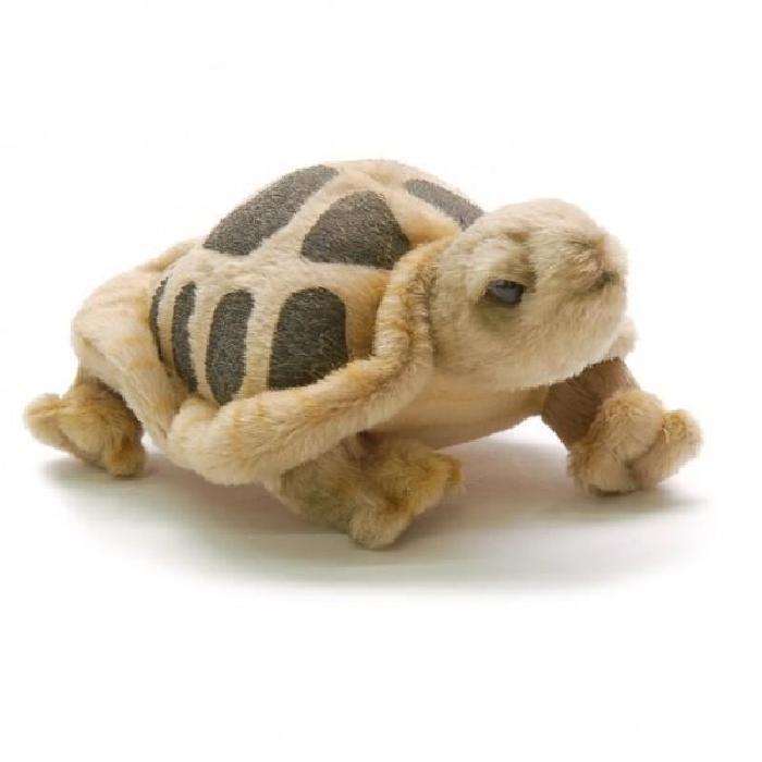 Peluche tortue de terre 15 cm Achat / Vente peluche Peluche tortue