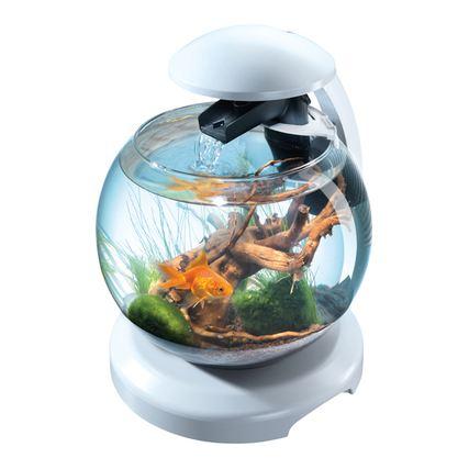 équipé Tetra blanc Achat / Vente aquarium Aquarium équipé Tetra