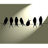 Pochoir de ligne style Shabby chic Vintage Oiseaux Rustic. 297 x 210