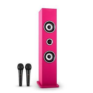 Colonne AUX USB Tuner Radio FM 2 X Micro Karaoke Bluetooth Rose