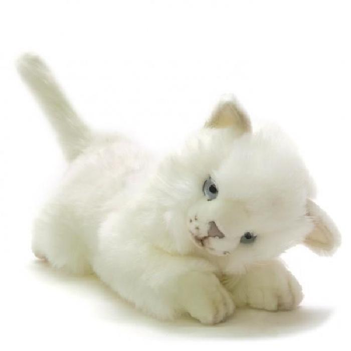 Peluche chat blanc joueur 24 cm Achat / Vente peluche