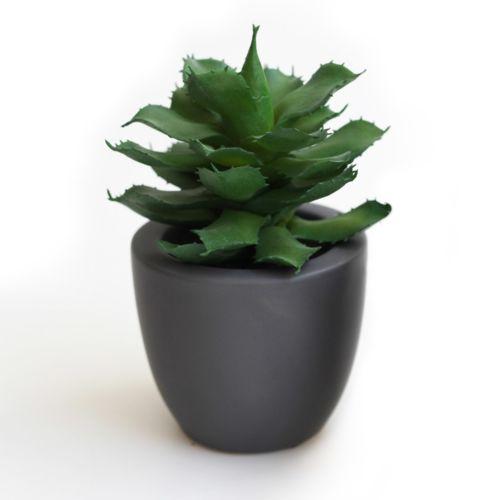 Asa Plante artificielle succulente Vi avec cache pot Gris Deko