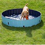 Piscine pour chiens 33x71cm Pataugeoire animal: Animalerie