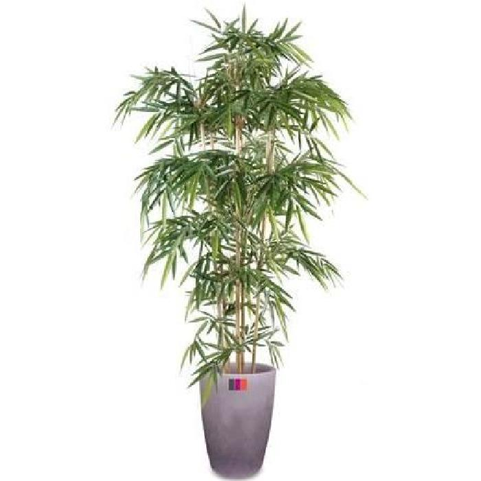 plante artificielle, semi naturelle Bambou new 6 cannes 180cm taille