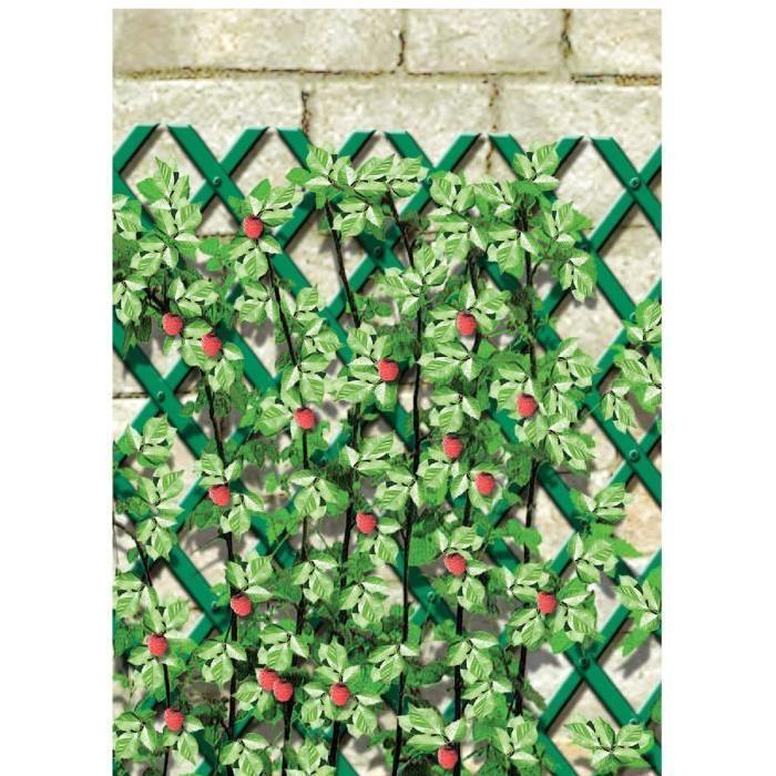 Croisillon plantes légères Cap Vert L1,5m l.0,5m Achat / Vente mur