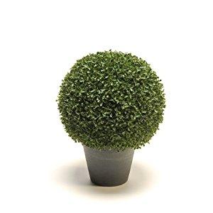 / plante artificielle buis artplants: Cuisine & Maison